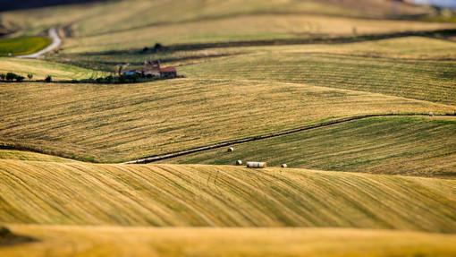Psr 2014-2020: il Piemonte è la regione con più fondi erogati per il mese di aprile