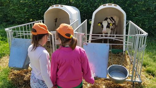 Bimbi alla presenza della filiera del latte